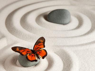 Zen Coaching – introduction